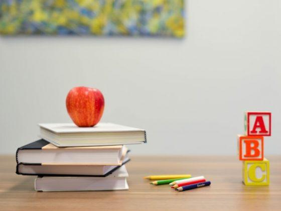 sebuah apel diletakkan diatas tumpukan buku sebagai ilustrasi pembelajaran salah satu rumus fisika