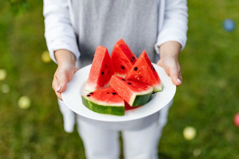 daur hidup semangka