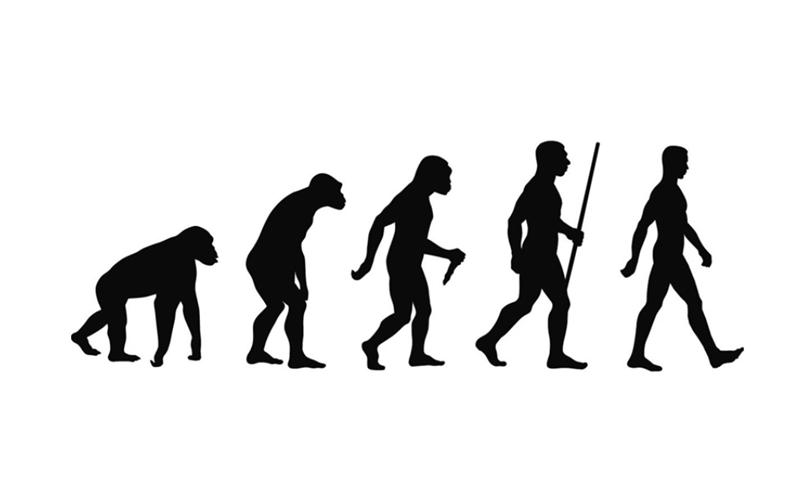 Sejarah Manusia Purba Dan Penyebarannya Di Dunia Kelas Pintar